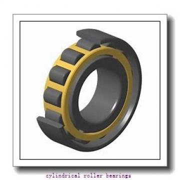 2.953 Inch | 75 Millimeter x 5.118 Inch | 130 Millimeter x 0.984 Inch | 25 Millimeter  CONSOLIDATED BEARING NJ-215 M W/23  Cylindrical Roller Bearings