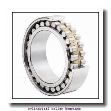 2.953 Inch | 75 Millimeter x 5.118 Inch | 130 Millimeter x 0.984 Inch | 25 Millimeter  CONSOLIDATED BEARING NJ-215E C/3  Cylindrical Roller Bearings