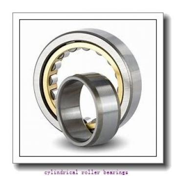 3.543 Inch | 90 Millimeter x 6.299 Inch | 160 Millimeter x 1.181 Inch | 30 Millimeter  CONSOLIDATED BEARING NJ-218E M  Cylindrical Roller Bearings