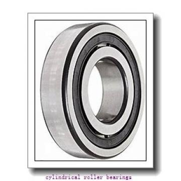 3.937 Inch | 100 Millimeter x 8.465 Inch | 215 Millimeter x 1.85 Inch | 47 Millimeter  CONSOLIDATED BEARING NF-320  Cylindrical Roller Bearings