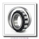 2.559 Inch | 65 Millimeter x 5.512 Inch | 140 Millimeter x 1.299 Inch | 33 Millimeter  CONSOLIDATED BEARING NU-313E C/3  Cylindrical Roller Bearings